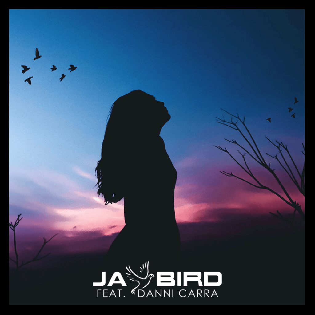 Jay Bird feat Danni Carra - Let You Down