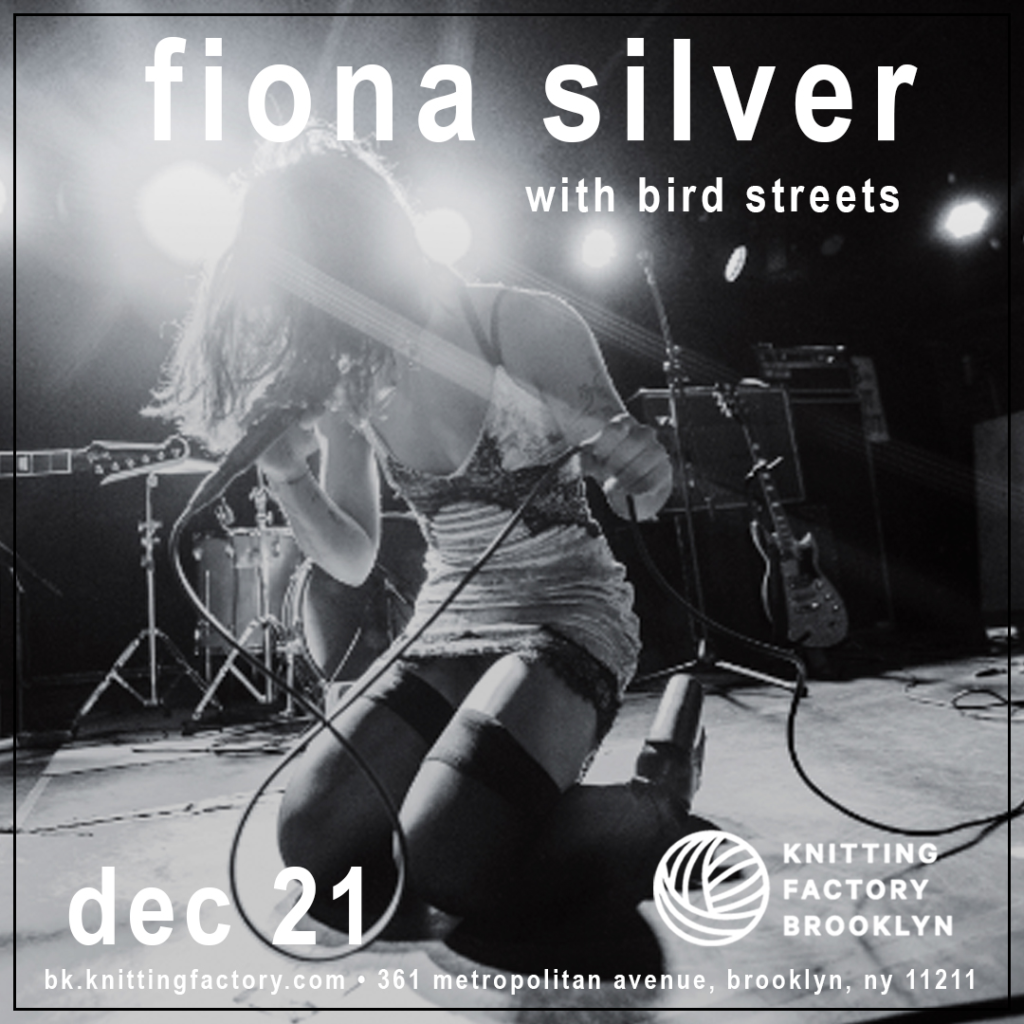 Bird Streets at Knitting Factory Brooklyn on December 21